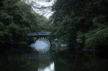 Danica Dakic, Flashback, Drachenbrücke im Bürgerpark. Grafik: Stadt Braunschweig Lichtparcours Braunschweig