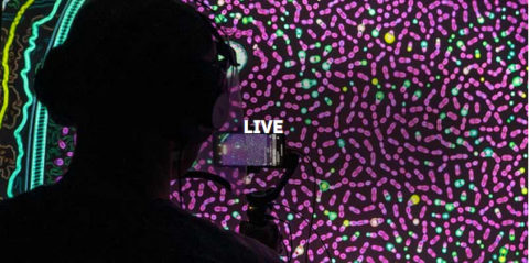 Ars Electronica Live