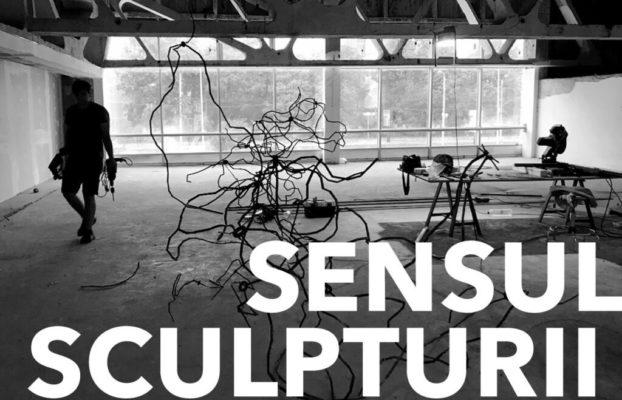 Sensul Sculpturii, courtesy Kunsthalle Brega