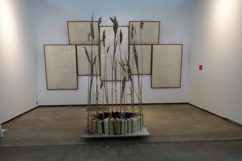 Luchezar Boyadjiev, Alice's Hole or the Swamp of Marx-Leninist Aesthetics, 1991