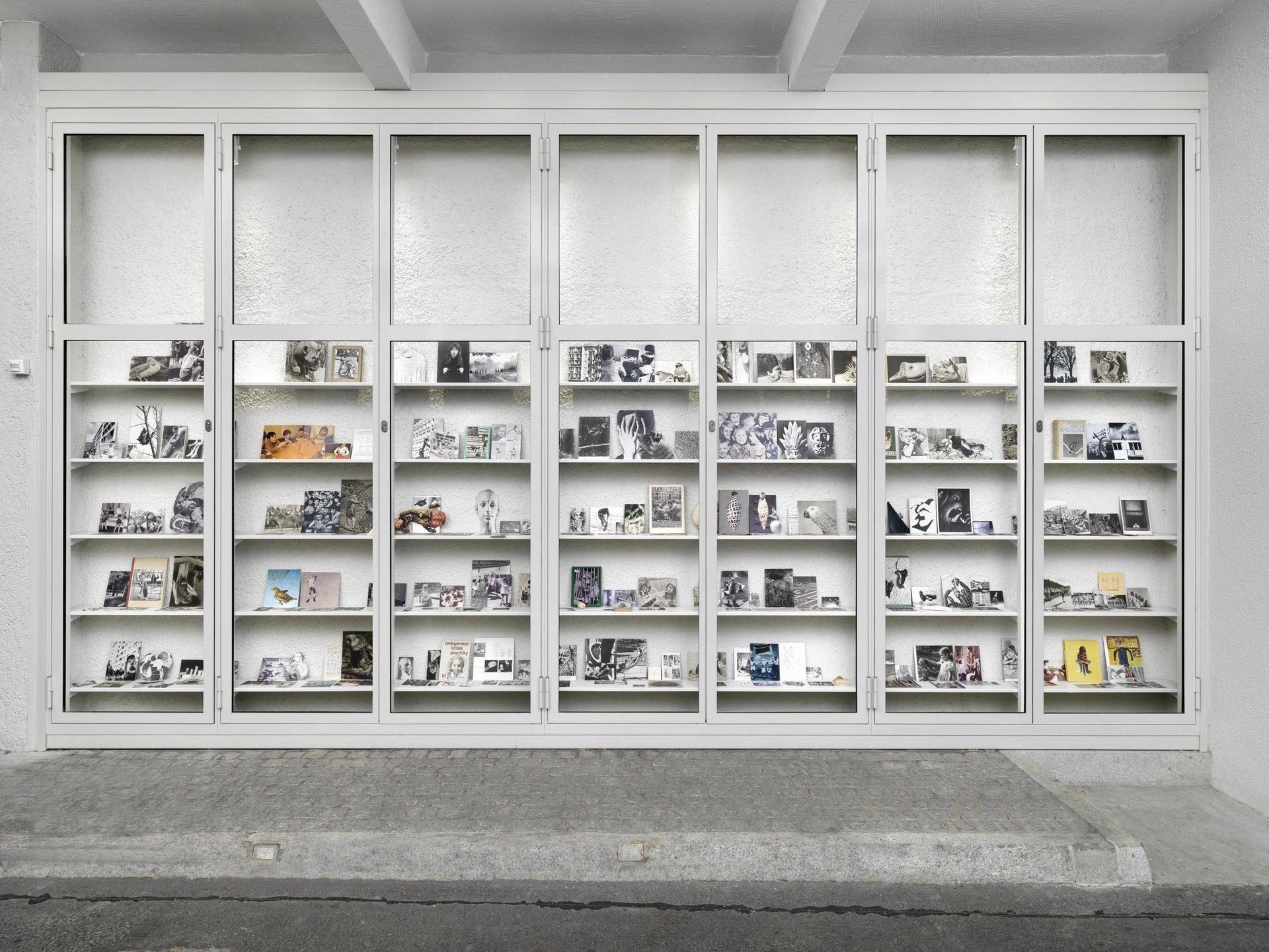 Eva Kot'átková, Psychological Theatre, Collection of Oskar, A Boy, Who Talks through Images, 2014