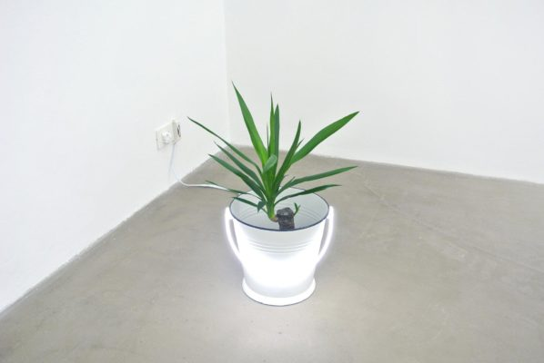 Vlad Nancã, Bucket II, 2013