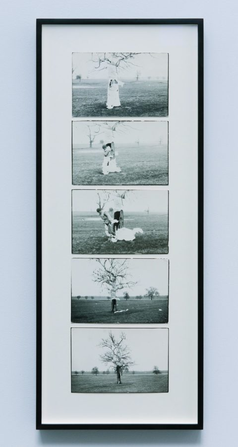 Dan Perjovschi, Action Tree, 1989