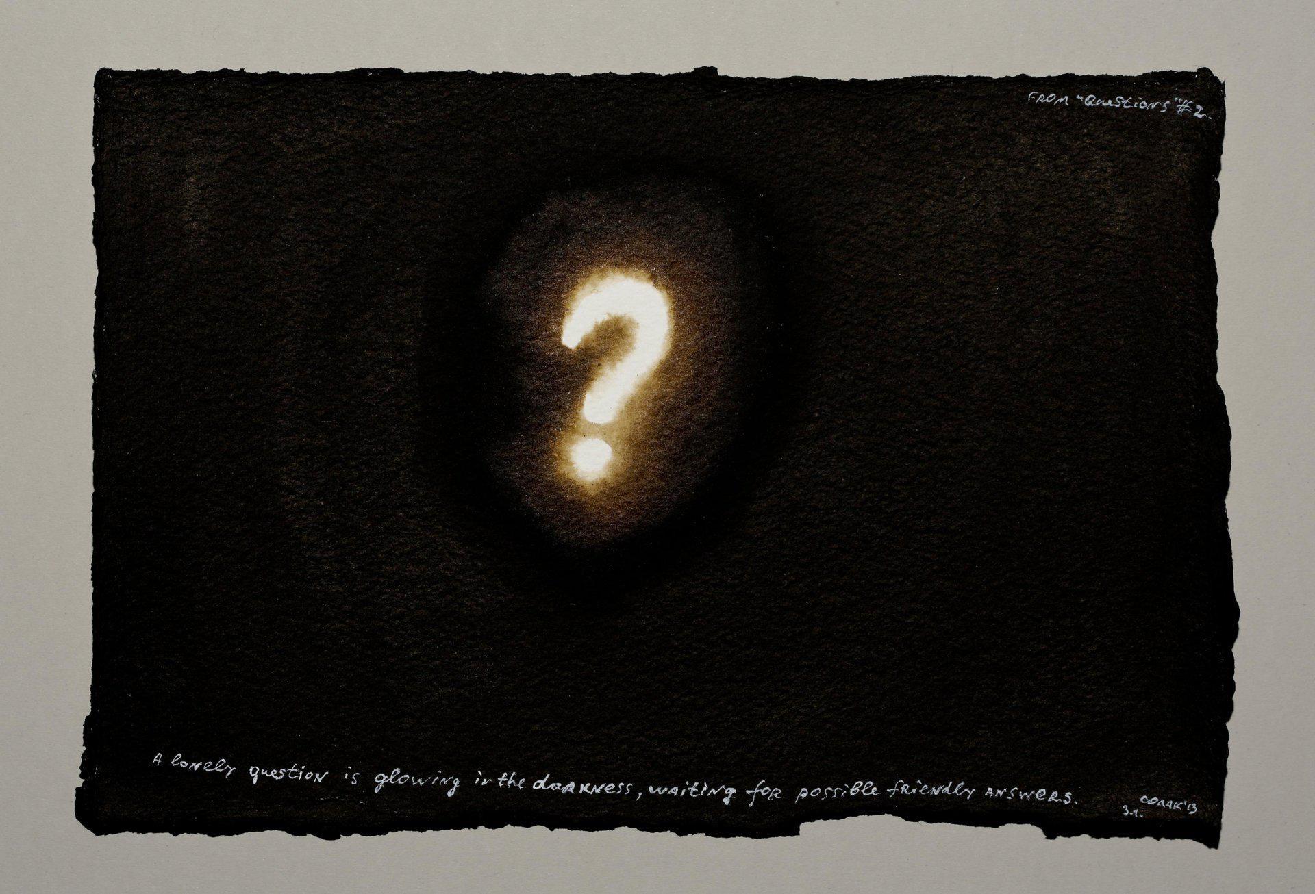 Nedko Solakov, Questions (2/12), 2013